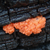 Weird orange fungus growing out of this burnt tree trunk